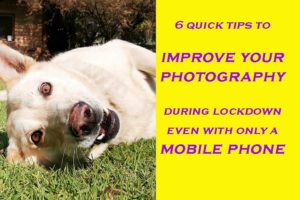 6 tips to improve your photography