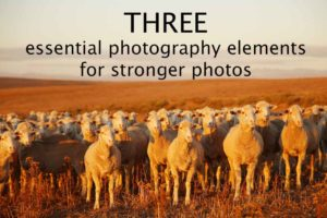 3 essential photography elements