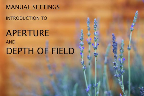 introduction to aperture and depth of field